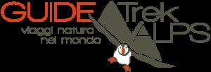 Logo Guide Trek Alps